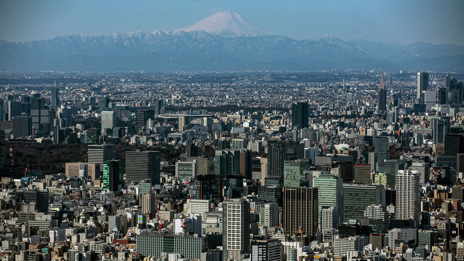 В Японии опровергли данные о подозрениях в отношении экипажа