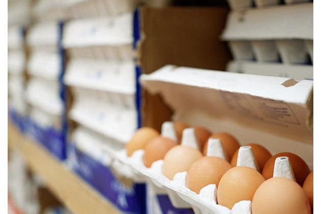 Минсельхоз опроверг дефицит яиц в России