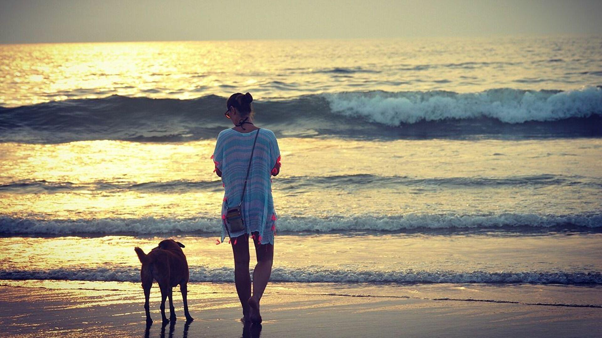 Кинолог рассказал, каких собак можно брать с собой на пляж